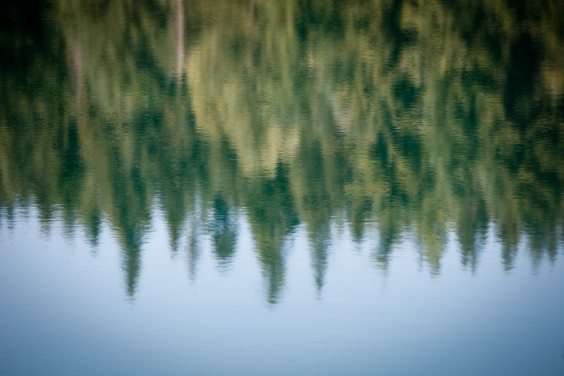 Snoqualmie Pass, Gold Creek Pond - Evergreen forest reflected upside down in lake