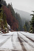 Snoqualmie Pass, Gold Creek Pond - Tire tracks on a snowy road, vertical