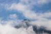 Quinault, Rainforest - Fog enshrouding a distant hillside