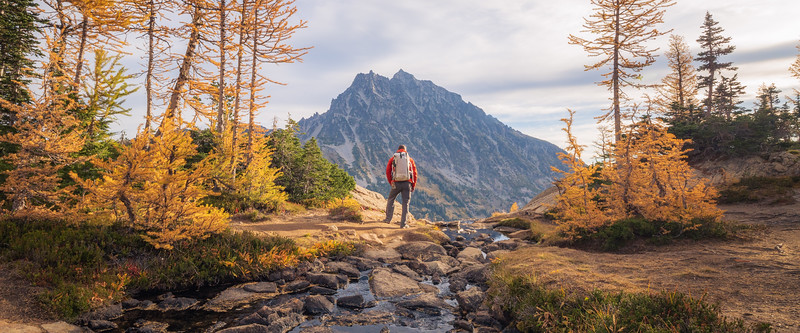 Stuart, Ingalls - Hiker stopping to admire the view with larch and Mt. Stuart