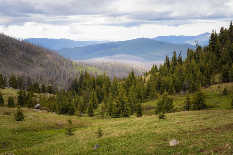 Pasayten, Horseshoe Basin - Above treeline looking back towards large area of burned forest