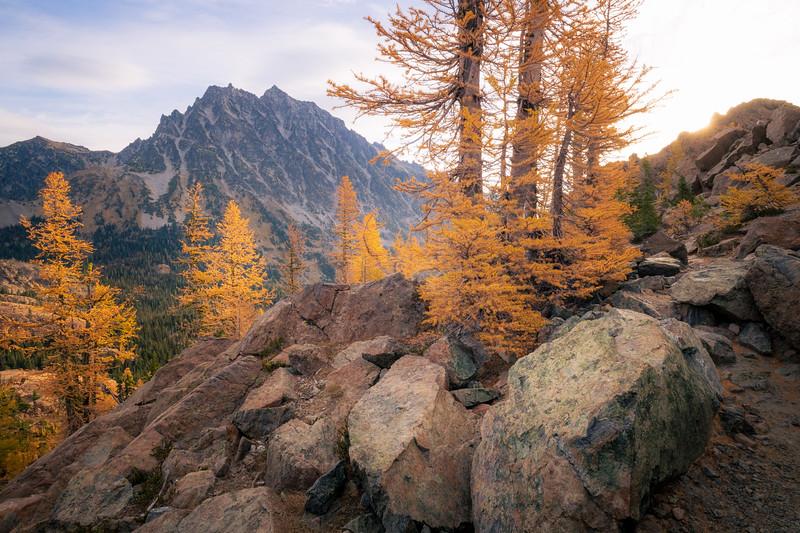Stuart, Ingalls - Mt. Stuart, larch trees, large boulder, and sun star