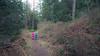 Skagit, Kukutali Preserve - Two little kids running down the trail