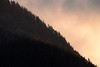 Snoqualmie Pass, Ski Area - Ridgeline of trees with sunset colors behind