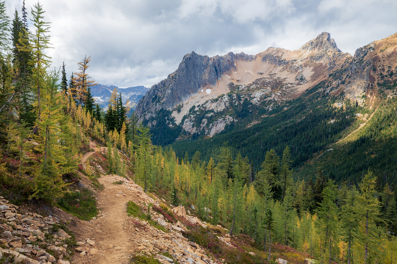 Rainy Pass, Cutthroat Pass - Clearing with trail above stand of larch and Porcupine Peak