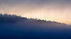Yellowstone, Landscape - Distant forested ridge with colorful and foggy sunrise
