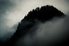 Snoqualmie Pass, Snow Lake - Dark and foreboding hillside in the fog