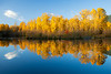 Easton, Pond - Stand of fall colors and cloud reflected in lake