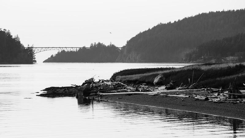 Skagit, Kukutali Preserve - Deception Pass bridge as seen from Kukutali, black and white