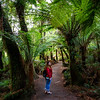 Victoria, Great Ocean Road - Woman under palm trees at Mait's Rest