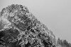 Snoqualmie Pass, PCT South - Guye Peak in a snowstorm cliffs, telephoto