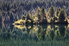 Snoqualmie Pass, Gold Creek Pond - Island reflected in forest lake, bright light