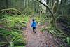 North Cascades, Newhalem - Little boy walking through forest