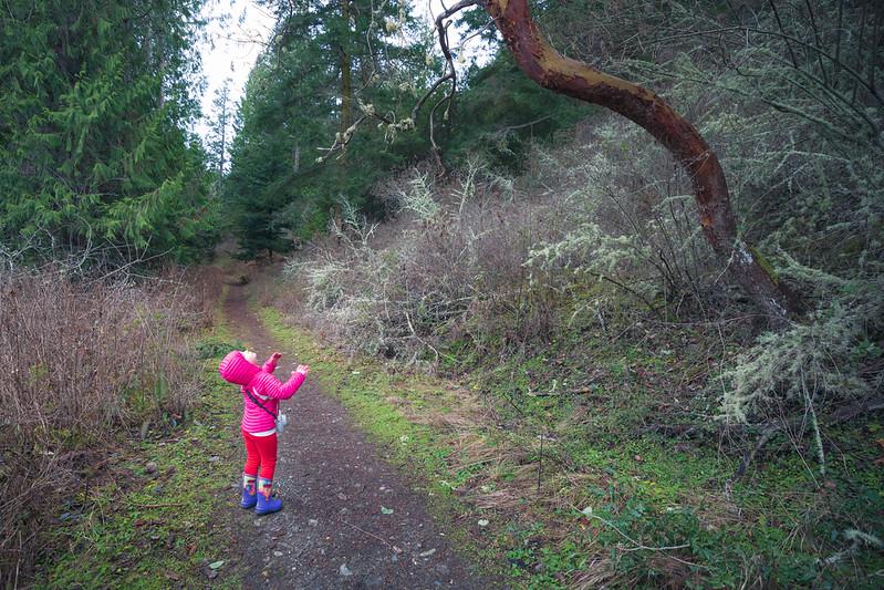 Skagit, Kukutali Preserve - Little girl leaning back under leaning tree