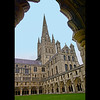 NORWICH CATHEDRAL by Peter Johnson