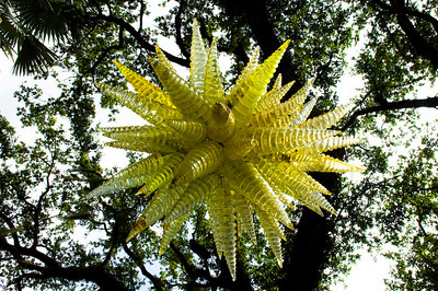 Miami, Florida - Fairchild Tropical Gardens - Chihuly Glass Exhibit -