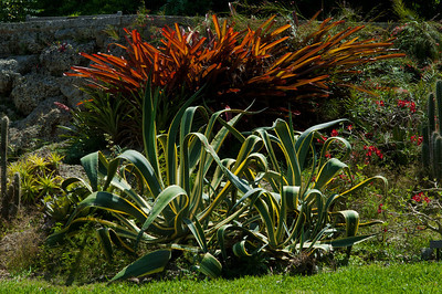 Miami, Florida - Fairchild Tropical Gardens