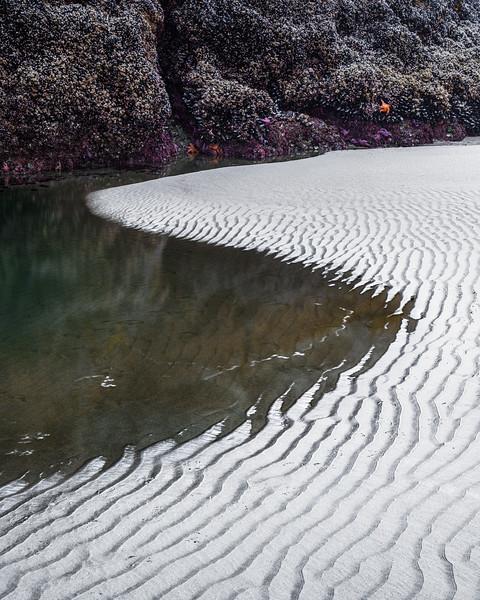 Tidal Ripples