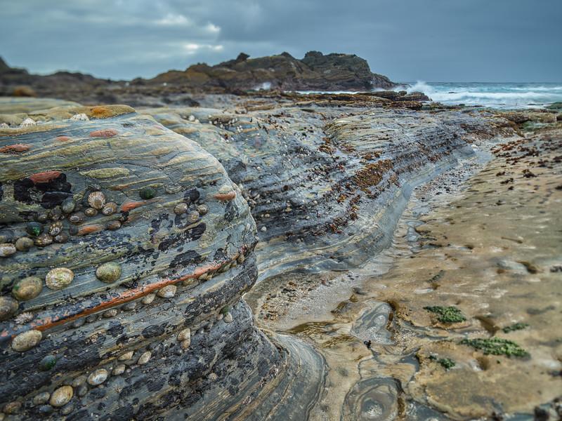 Low Tide Reveals
