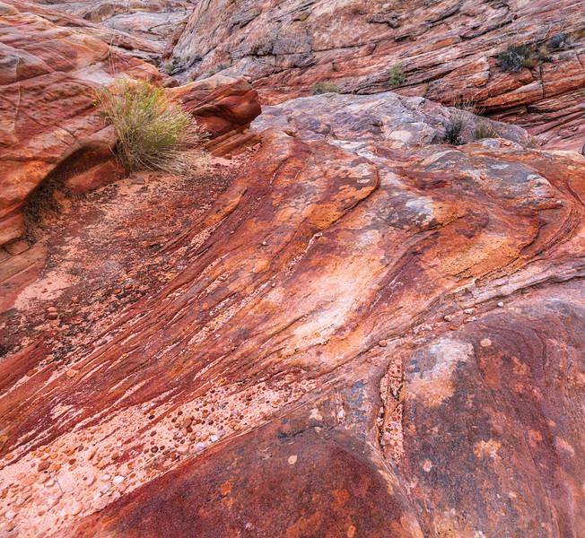 Red Desert Rock