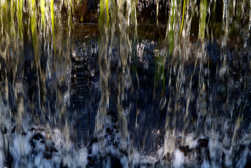 © 2014 Steve Schroeder - Water and Grass