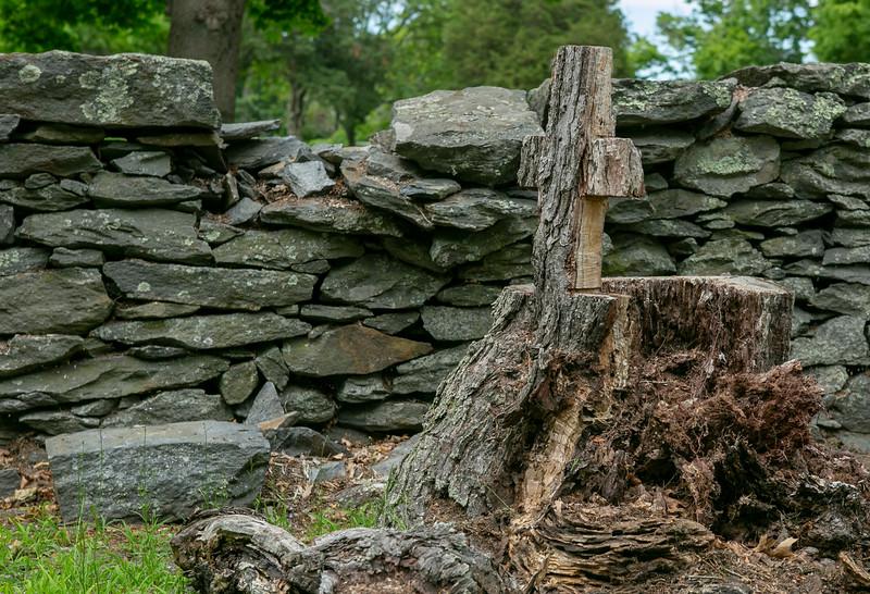 © 2018 Frank Hutnak - Goddard Memorial State Park, East Greenwich, RI