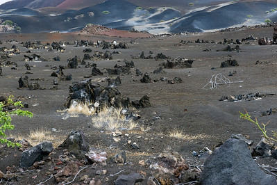 Volcanic landscape, Ascension Island.