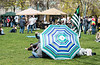 Flying the pot flag over an umbrella in the park.
