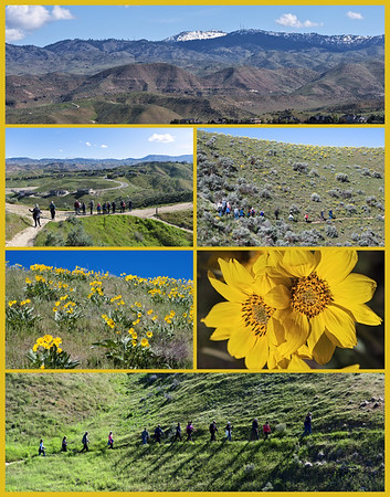 Sometimes a collage conveys a better impression than a sequence of images. This image was built from a number of shots I took while hiking with my wife's Meetup group in the Boise foothills.  It quickly imparts a sense of the day.