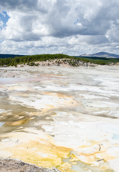 Sometimes I am pleased with what comes out of my cameras. Today we drove up to Yellowstone again to see the paint pots. Paint pots are boiling cauldrons of mud and, for utterly inexplicable reasons, people love paint pots!  Sure the geysers, rivers, mountains, wildlife, and super volcanoes are OK, but what about those paint pots? The paint pots did not disappoint but on the way back we stopped in at the Norris Geyser Basin. Mali didn't see this basin on previous trips and I couldn't remember my last visit. It was time for a look. The sky and light were with me and colors on the basin did the rest.