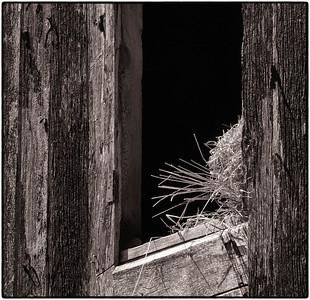Barn Wood  05 31 11  050 - Edit