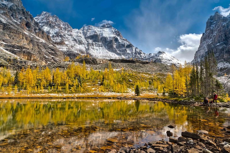Alpine Afternoon. Opabin Plateau, Yoho National Park