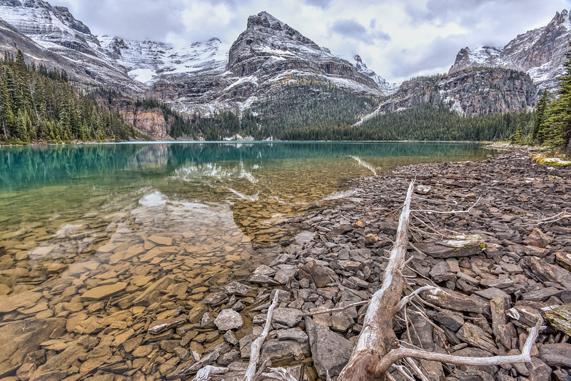 Lake O'Hara. Yoho National Park