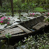 Old boat in a water garden, Mekong backwaters near Can Tho, Vietnam.