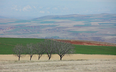 Plain west of Nevsehir, Turkey.