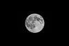 Kittitas, Bean Creek - Full super moon set against a black sky