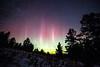 Central, Big Belts - Aurora borealis through the trees