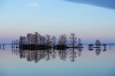 Lake Mattamuskeet 458