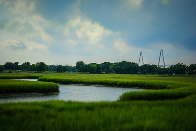 Marshes at Shem Creek
