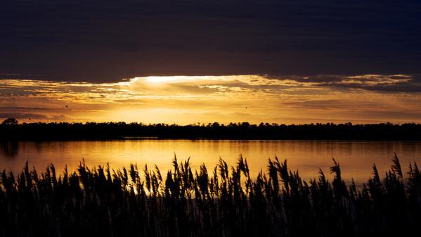 Lake Mattamuskeet 412