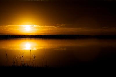 Lake Mattamuskeet 452