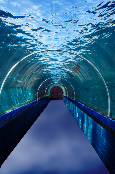 TUNNEL OF WATER by MARIE KING
