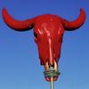 Red Brazil bull.