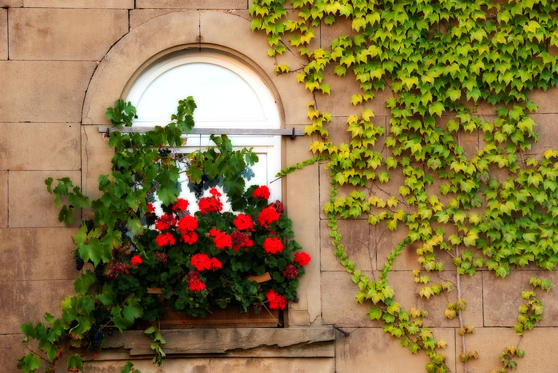 Window Box. A German Village