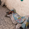 Boy sleeping on the street, Alexandria, Egypt