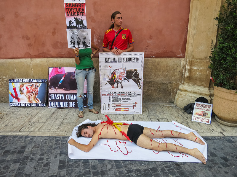 Bullfight protest, Murcia, Spain