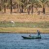 Fishermen, Nile River, Egypt