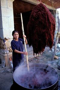 Santa Ana del Valle, México 2002