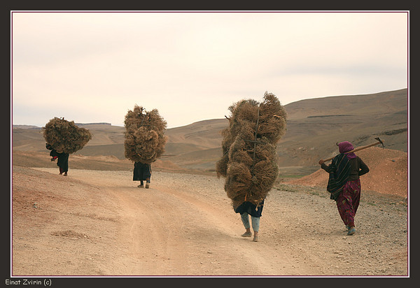 Heavy Load <br /> Atlas Mountains