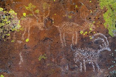 Petroglyphs, Irish Mountains, Hiko, Nevada